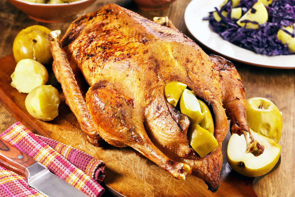 сразу блюда из курицы гуся утки рецепты фото был